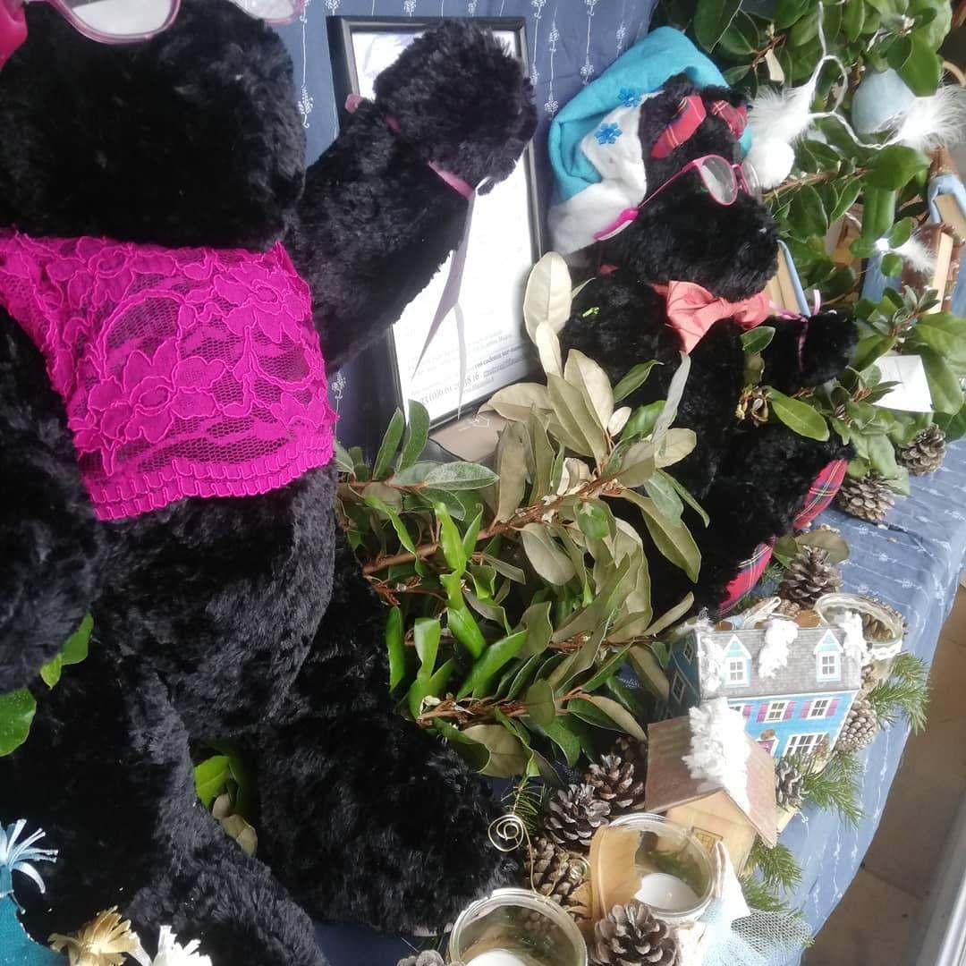 Vitrine des ours et cadeaux de Fifi Il était une fois Noel chez Fifi au jardin avec Les Amis de Fifi