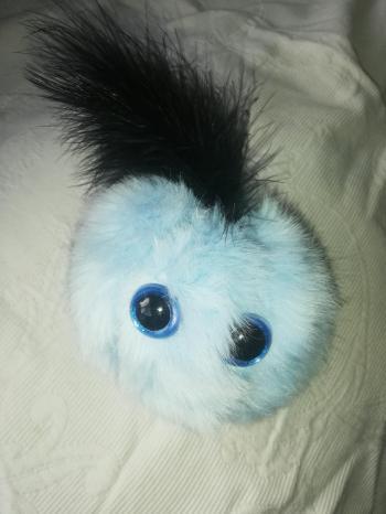 Pitou bleu clair