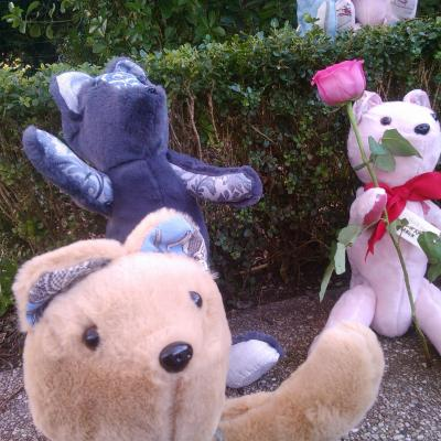 Les ours de collection de Fifi