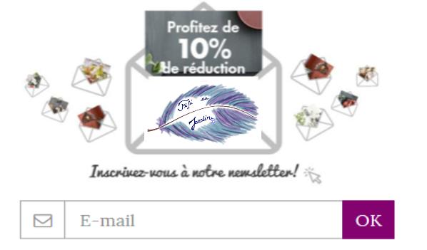 Newsletter et logo template site fifi au jardin